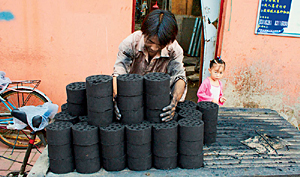 coal briquettes in China