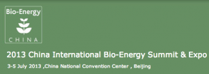 2013_China_International_Bio-Energy_Summit___Expo